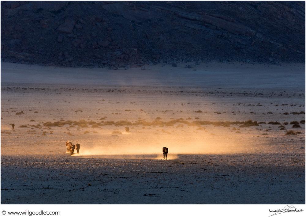 Dawn in the desert, Garub Pan, Namibia.