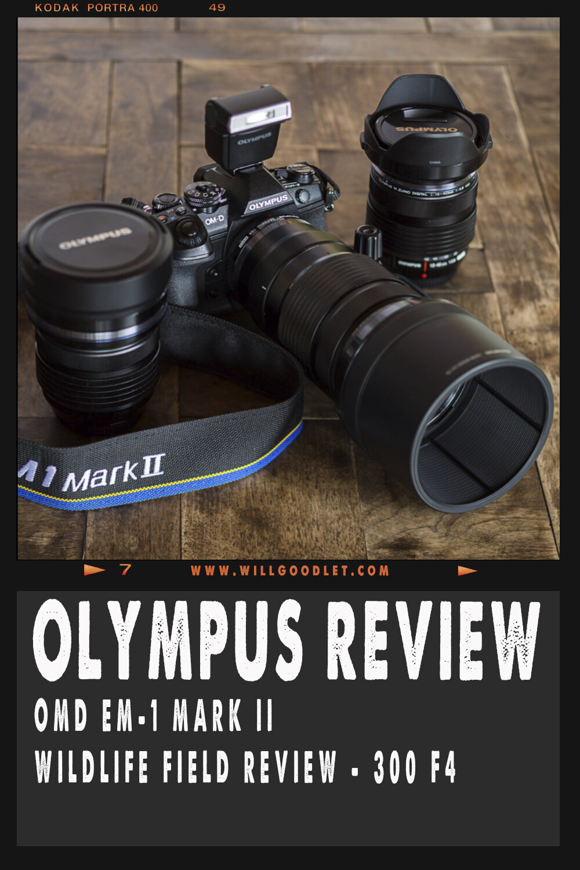 Olympus Omd Em 1 Mark Ii Wildlife Nature Field Review Will Om D E M5 Kit Ed 12 40mm F 28 Pro