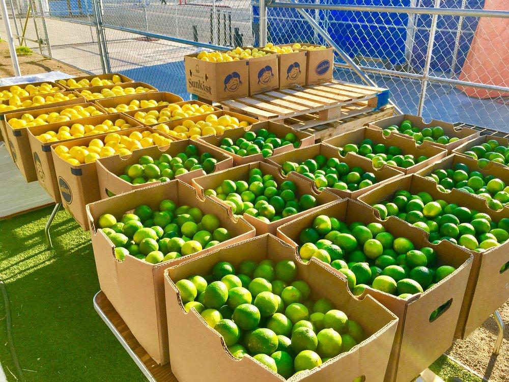 Lemons & Limes 3.jpg