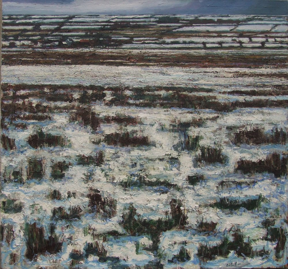 Fields near Frenchpark, Winter, 2016, oil on canvas, 141 x 151 cm.JPG