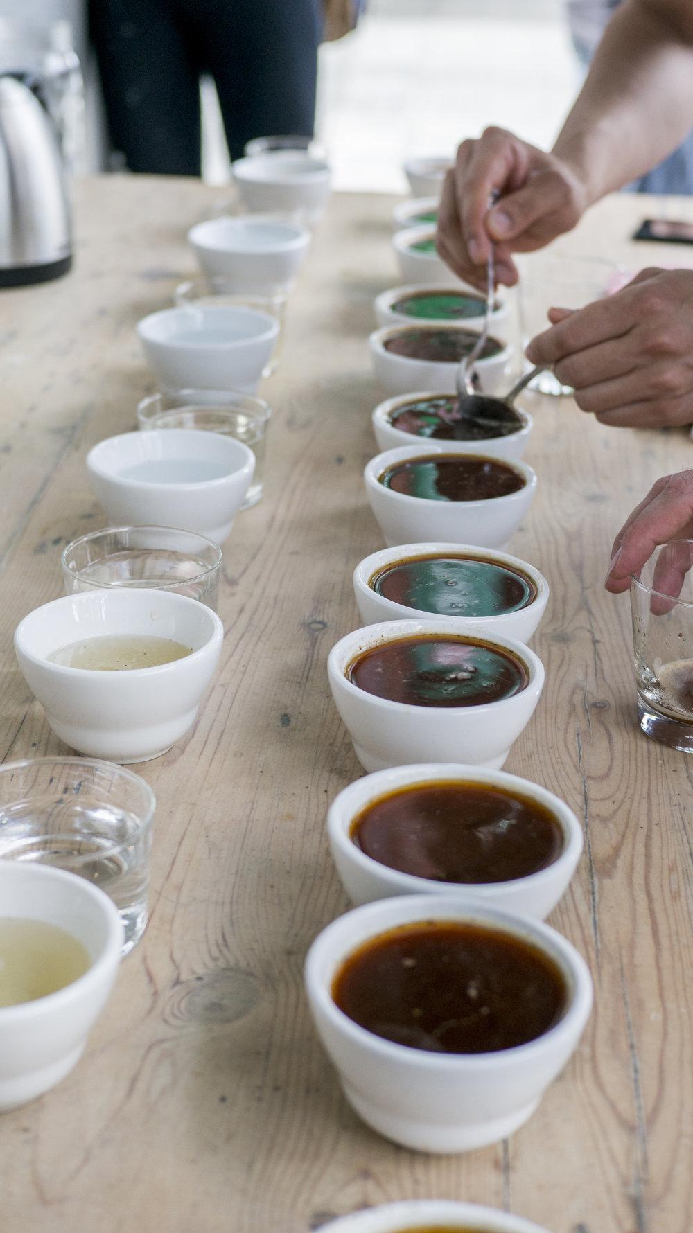 coffee_potluck_aubade_bbq.1009.jpg