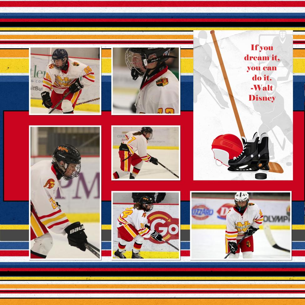 hockey-6.png