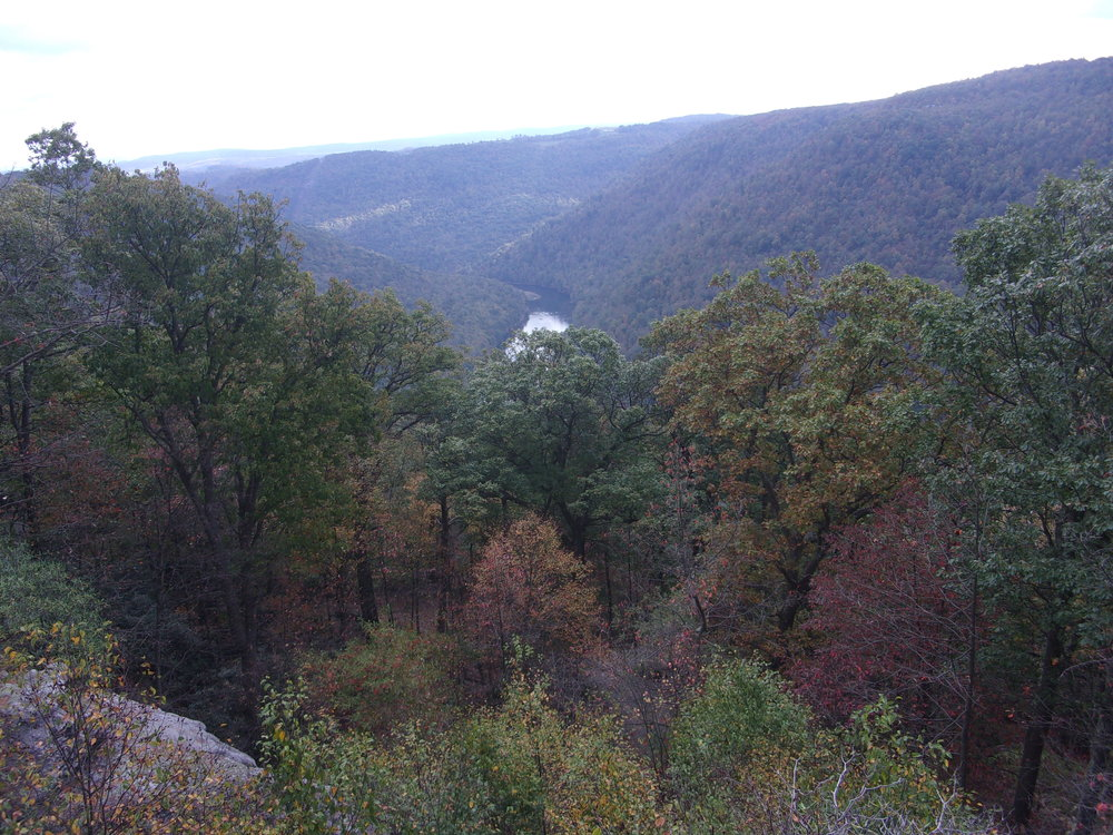 Despite the lack of color in October, views from Cooper's Rock never disappoint.