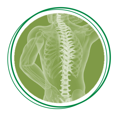 Healthy Spine with Susan Holewinski