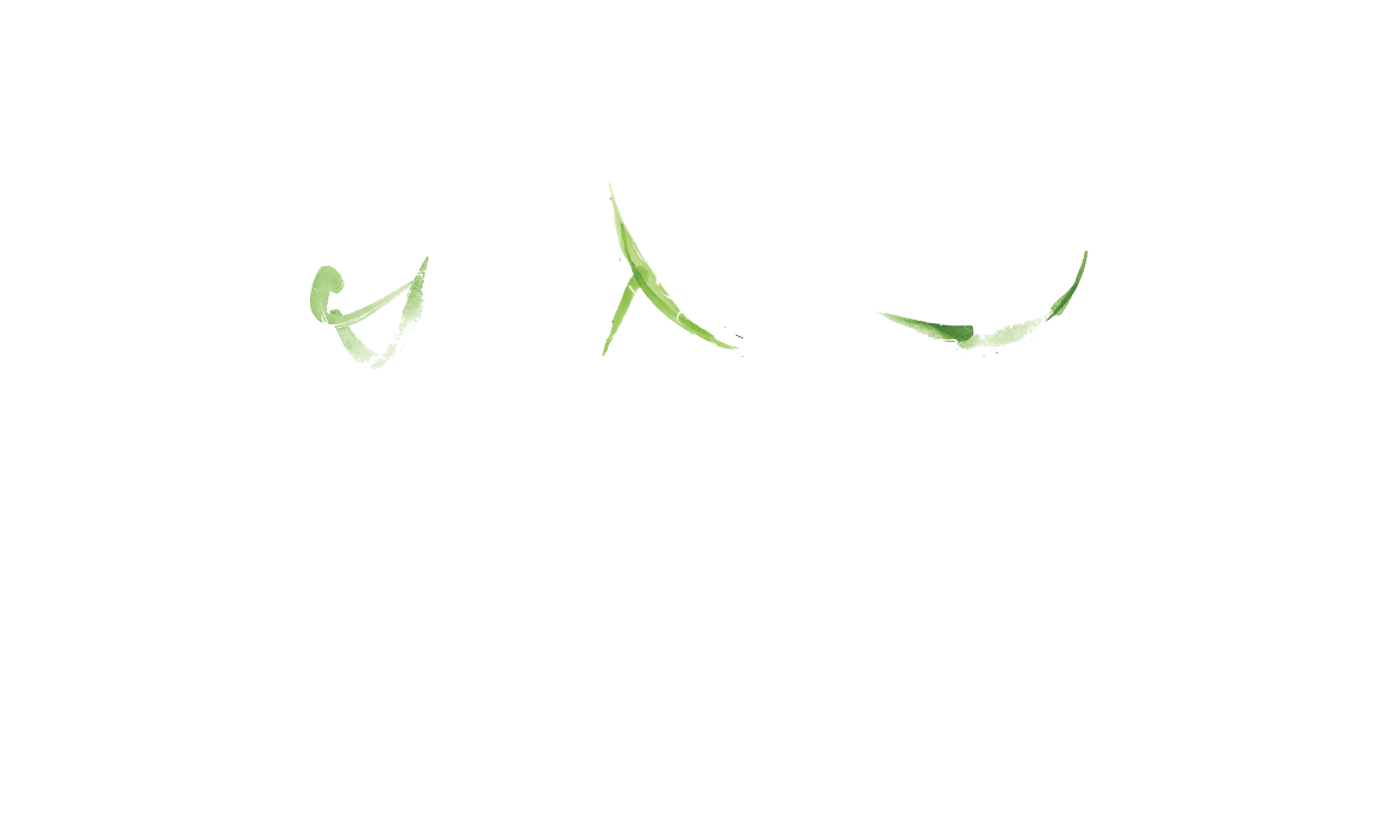 Indy Pilates Plus
