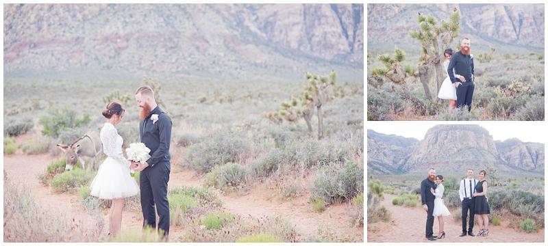 Las_Vegas_Modern_Destination_Elopement-19.jpg
