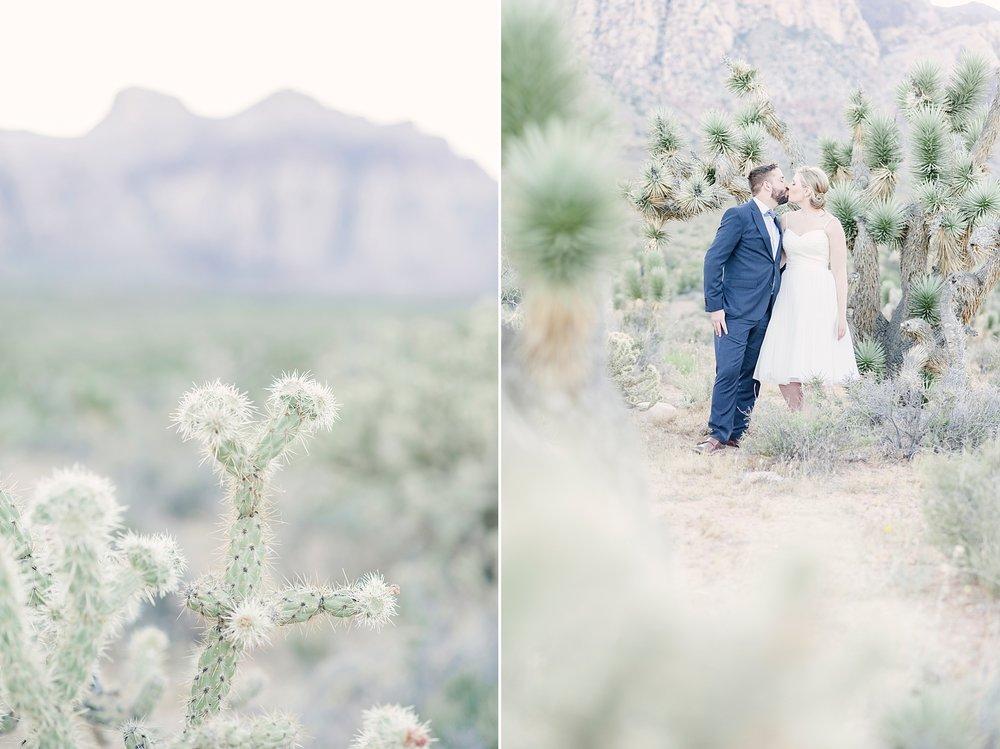 Las_Vegas_Neon_Museum_Wedding_desert_elopement-17.jpg