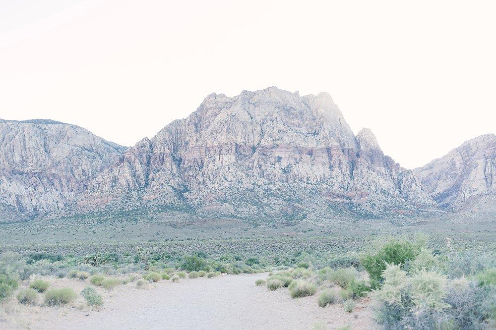 Las_Vegas_Neon_Museum_Wedding_desert_elopement-14.jpg
