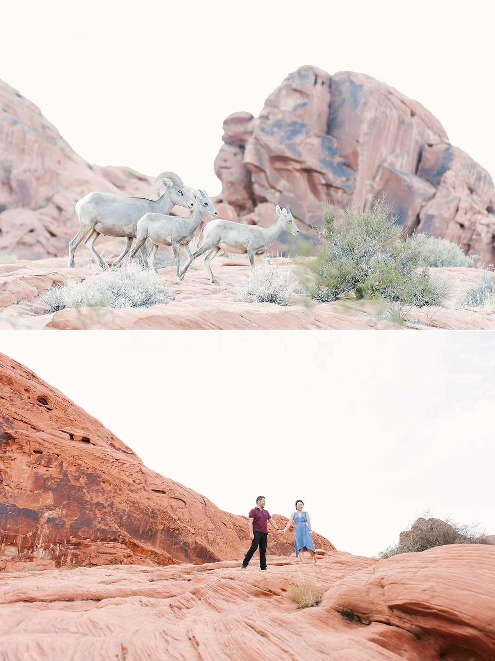 Valley_of_Fire_Las_Vegas_Engagement_photos-8.jpg