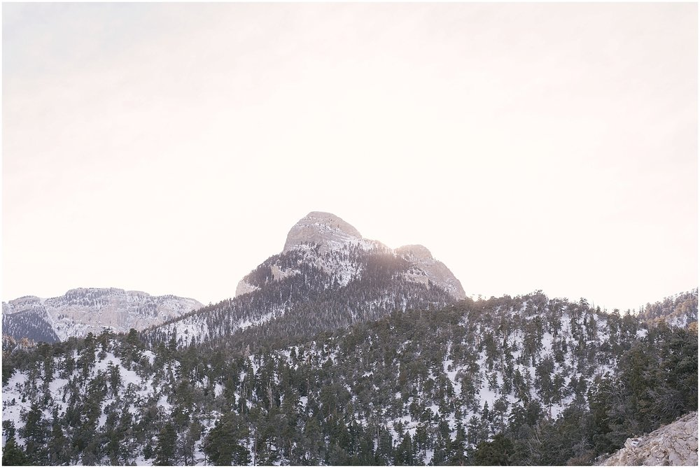 las_vegas_winter_mount_charleston_elopement_photos_blog-29.jpg