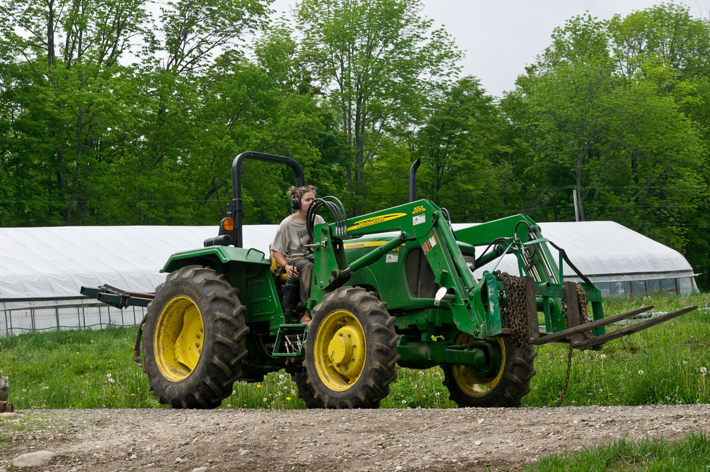 Instead of a close up of a pollinator on a blossom, please enjoy this excellent picture of Morgan driving the tractor... She is kind of like a pollinator, busily buzzing around the farm, tending to a zillion things before heading home to rest for the day, photo by Adam Ford