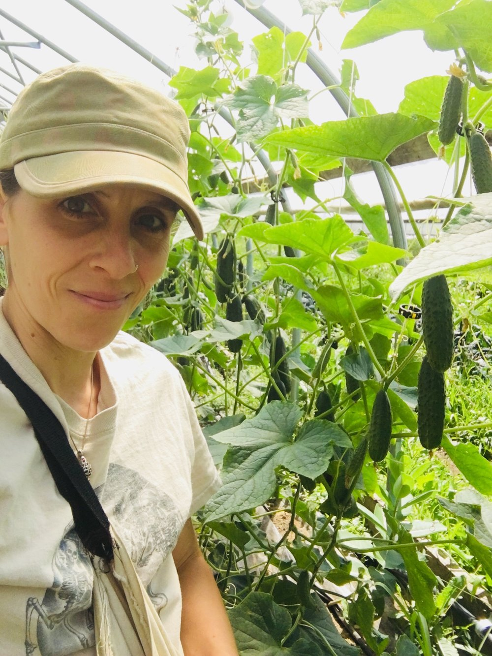 Taylor harvesting cukes, selfie by Taylor Morneau