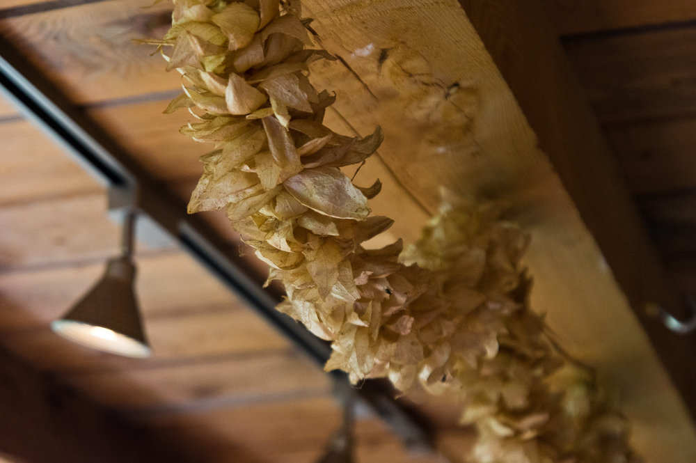 This is a garland made from dried tomatillo wrappers… this is how a farmer may decorate their kitchen, garland courtesy of Maya Zelkin, photo by Adam Ford