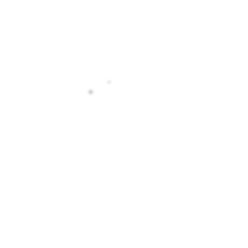 Alchemy Content Solutions