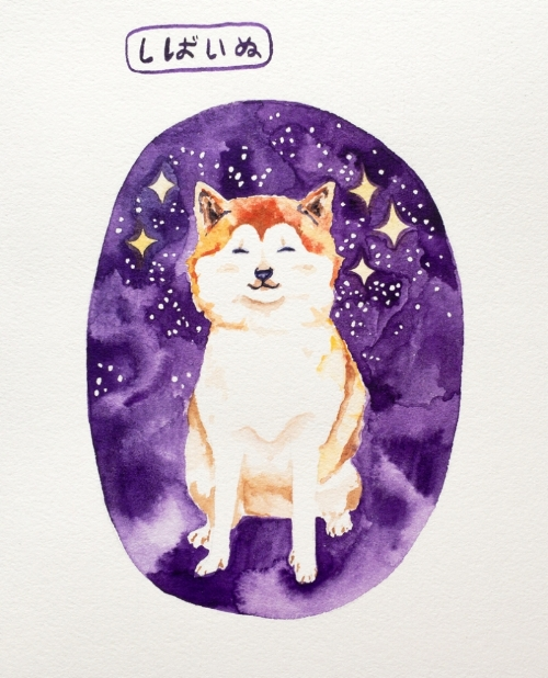I met a lady with FIVE shiba inu on Wednesday in the park. They were all sitting so nicely, impeccably behaved, overwhelmingly cute and now, of course, I want one. Or five.