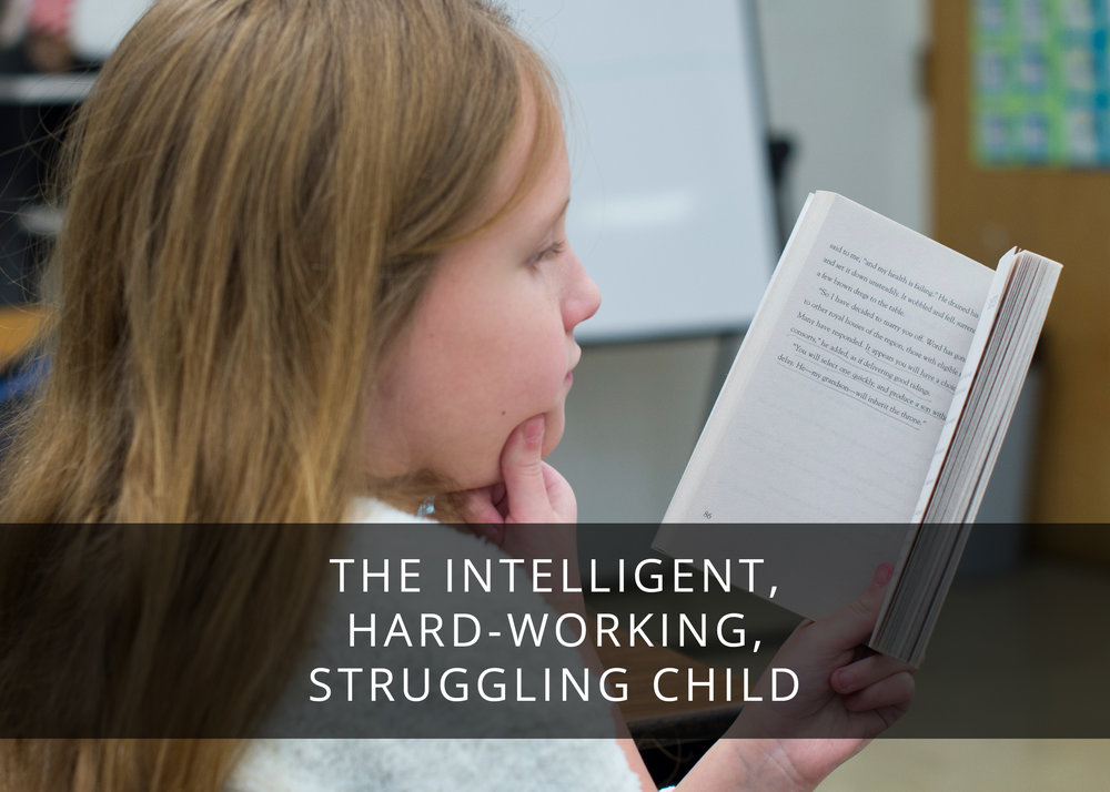 The Intelligent, Hardworking, Struggling Child.jpg