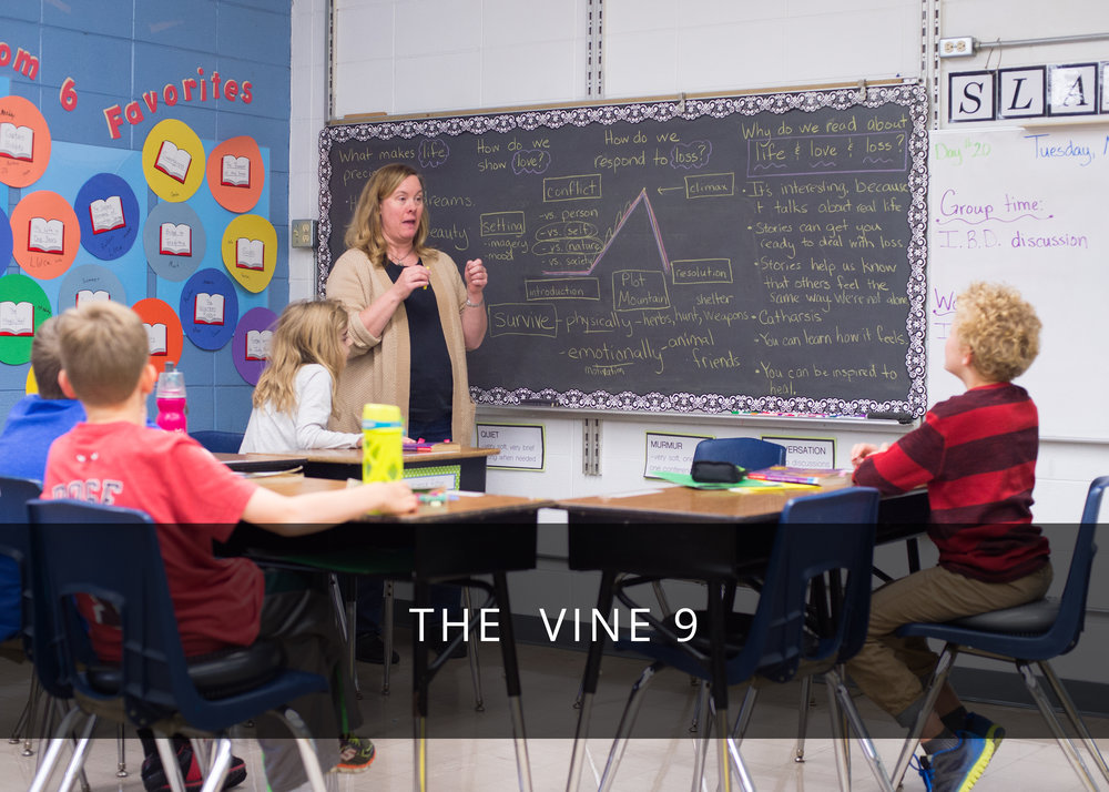 THE VINE NINE.jpg