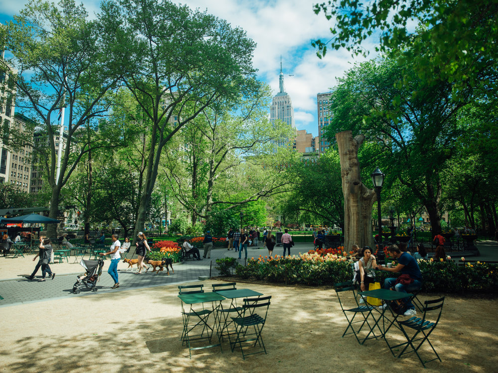 Madison Square Park    Photography by: Mike Allen Photography