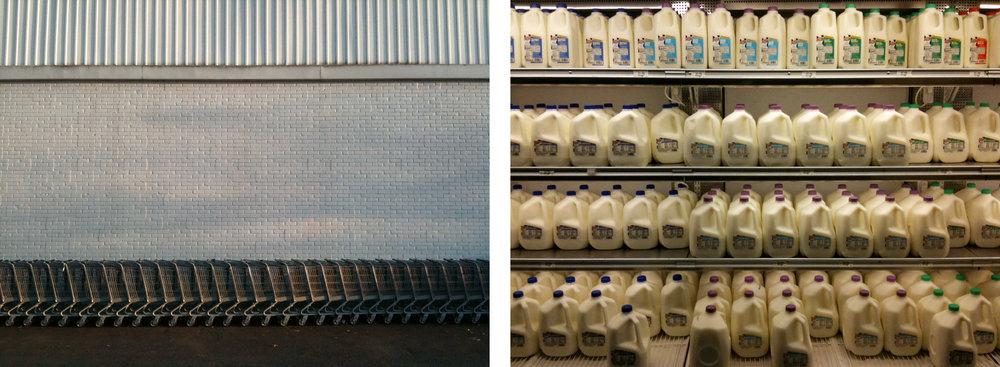 milk+grocerycarts-2.jpg