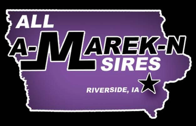 All A-Marek-N Sires