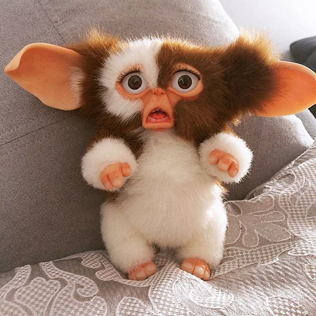 How I feel when I realize the person standing next me, probably heard me fart. #gremlins #losangeles #fart #embarrassing #hollywood