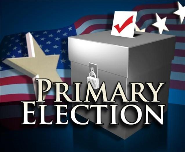 Primary Election.jpg