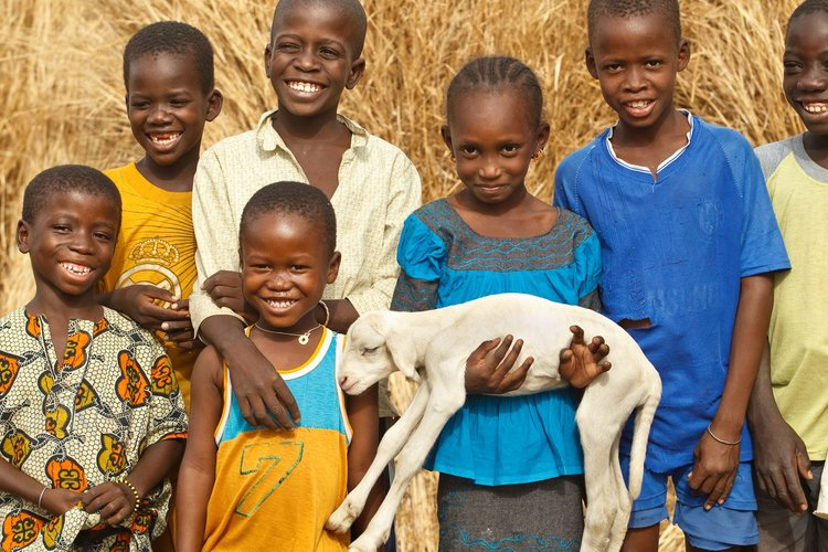 Knocking Out Poverty One Gift at a Time with Heifer International