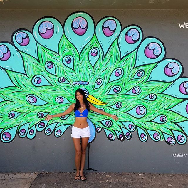 A peacock mural on the Side of North Shore Surf Shop, Haleiwa, Hawaii.