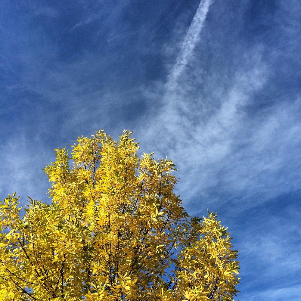 2014-10-03 16.56.24-1.jpg