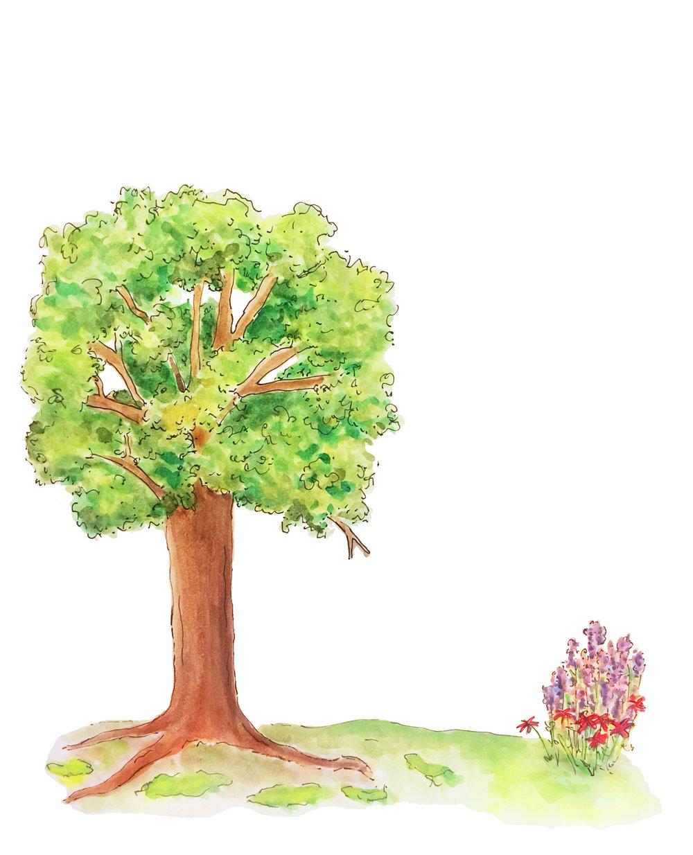 Joy Trees.jpg