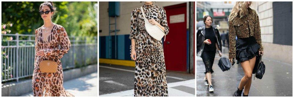 Leopard for Spring 2019
