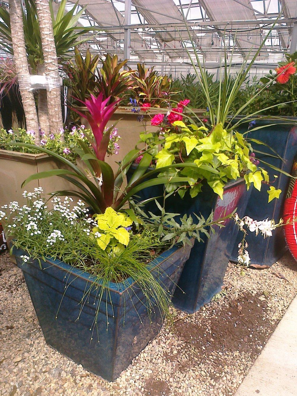 planter 2.jpg