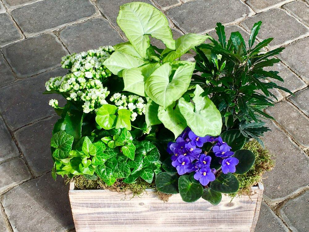 box planter.jpg