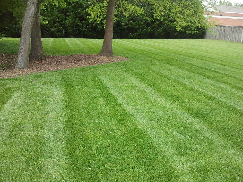 lawn mowed.jpg