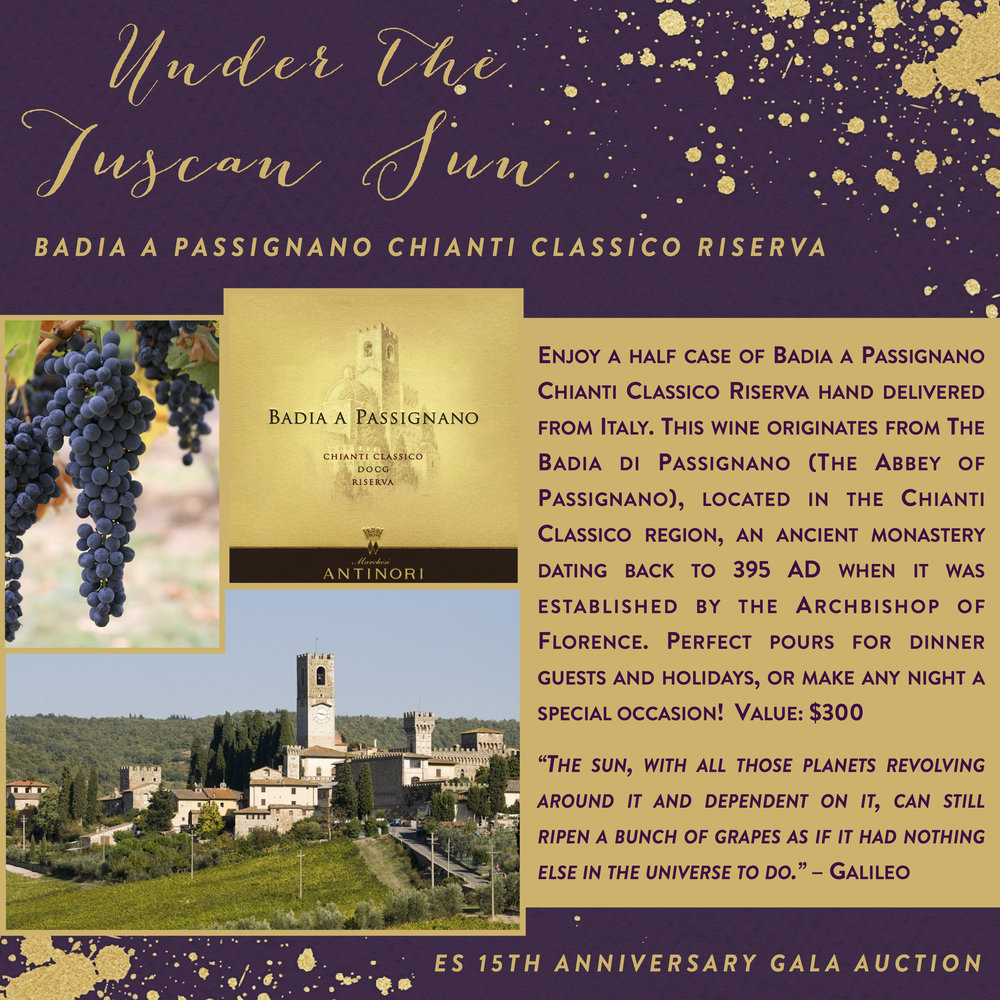 ES 15th Anniversary Gala-Auction Items-ChiantiClassicoRiserva.jpg