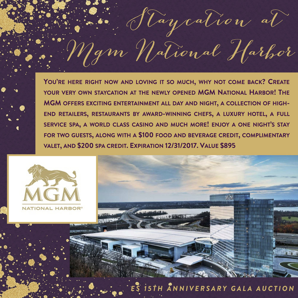ES 15th Anniversary Gala-Auction Items-StaycationMGM.jpg