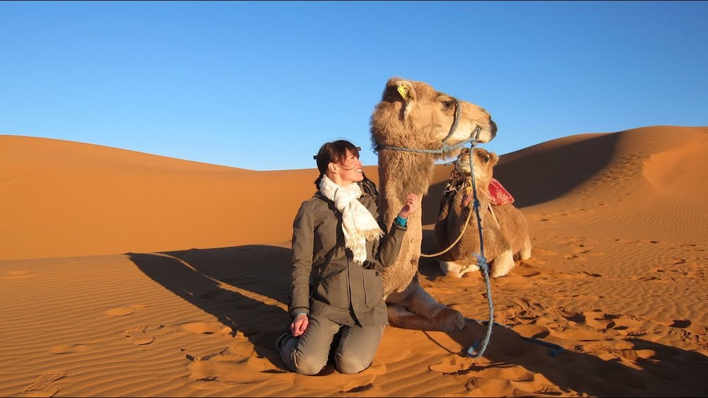 camel morocco.jpg