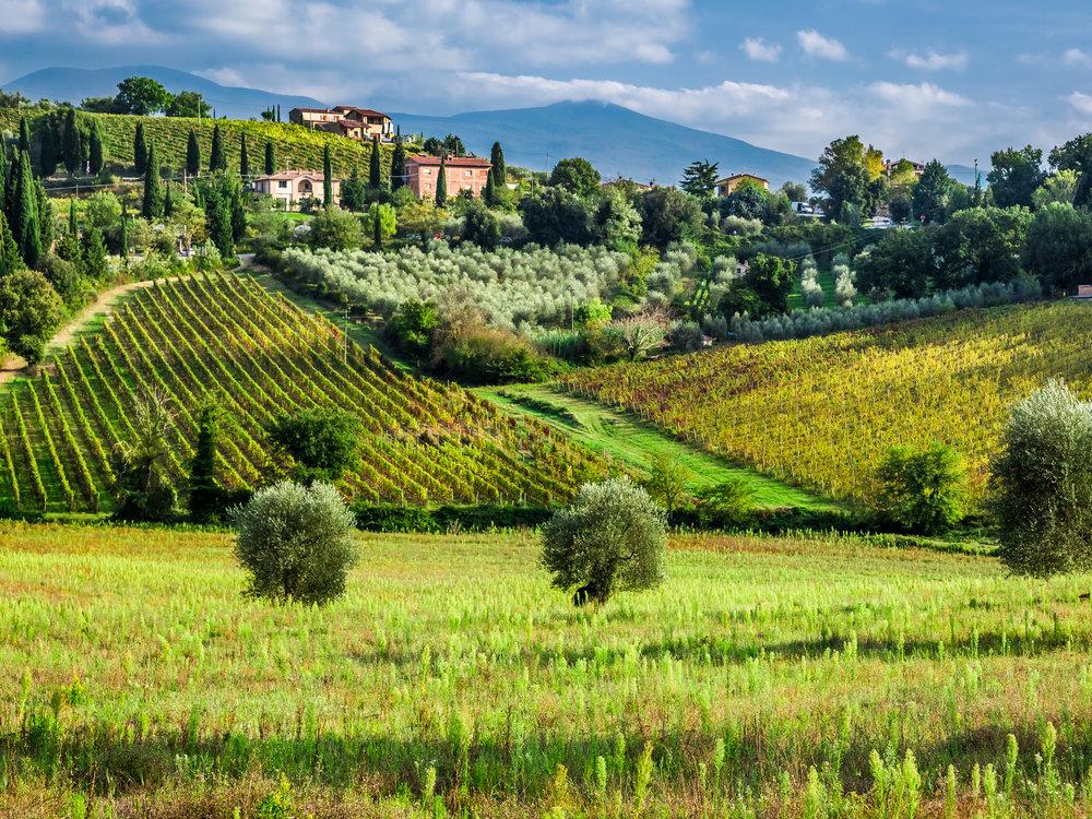 SFD_Wine_Region_Tuscany_CR_iStock_2520x1890.jpg