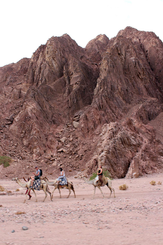 Dahab_Coachhouse_Egypt_Beach_Red_Sea_Trip_Wadi_Gnai_Camel_Mountain_Granite_Bedouin.JPG
