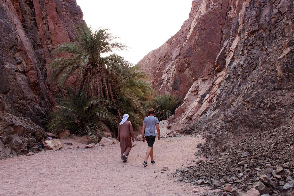 Dahab_Coachhouse_Egypt_Beach_Red_Sea_Trip_Wadi_Gnai_Camel_Mountain_Granite_Bedouin_Date_Palms_Oasis.JPG