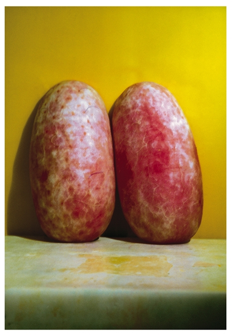 Melons, Joan Goldin