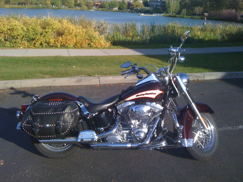 Dave's 2006 Harley Softail