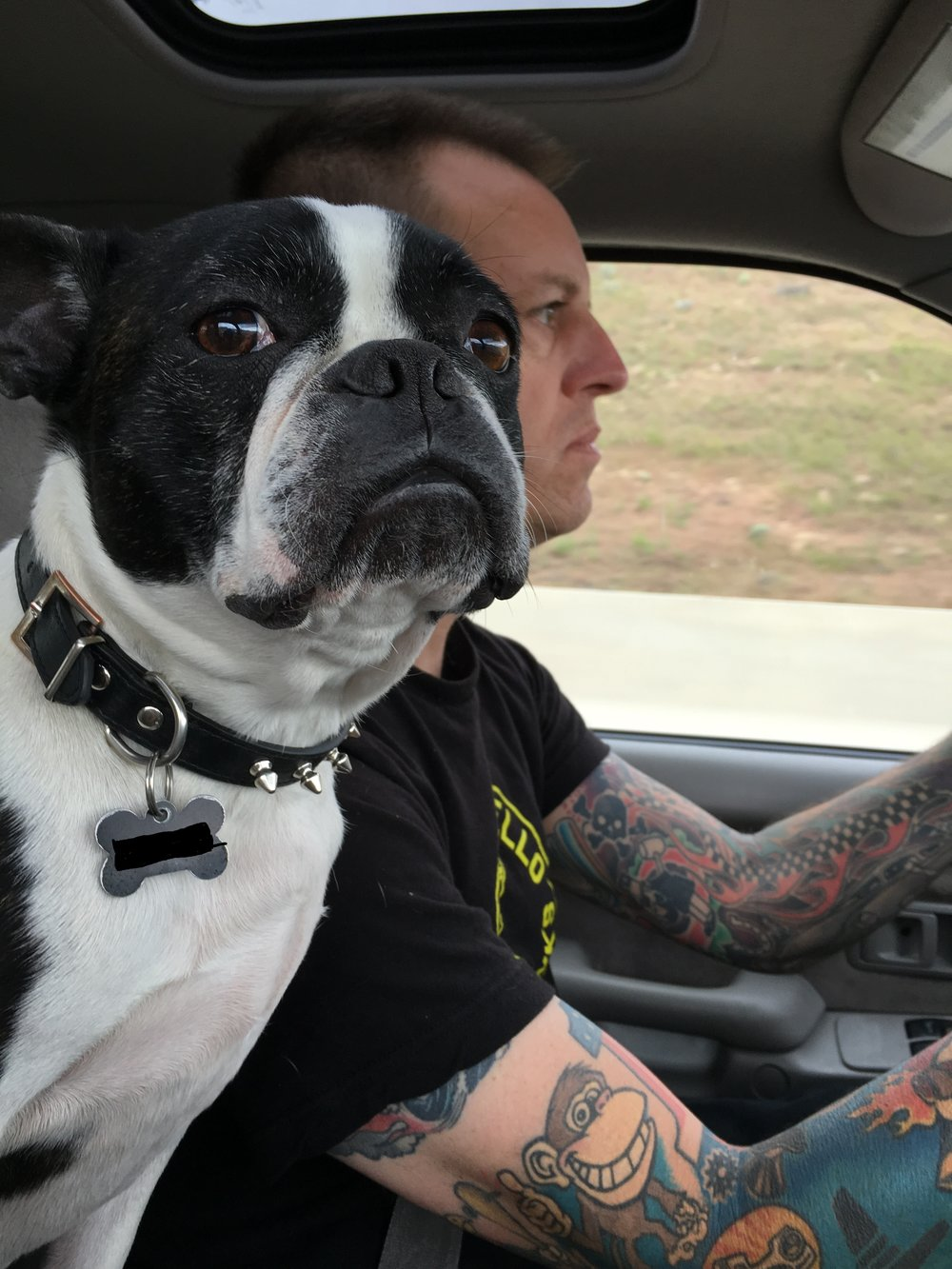 "OUR FAITHFUL CO-PILOT:  ""SIR ATTICUS"" (AND TODD)"
