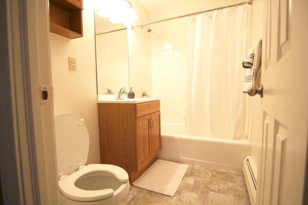 Image of a bathroom, from the left a toilet with medicine cabinet overhead, a sink and mirror with cabinet storage and lighting figures above, and shower.