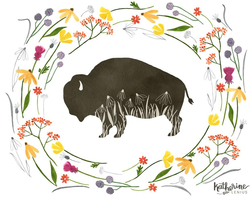bison-prairie.jpg