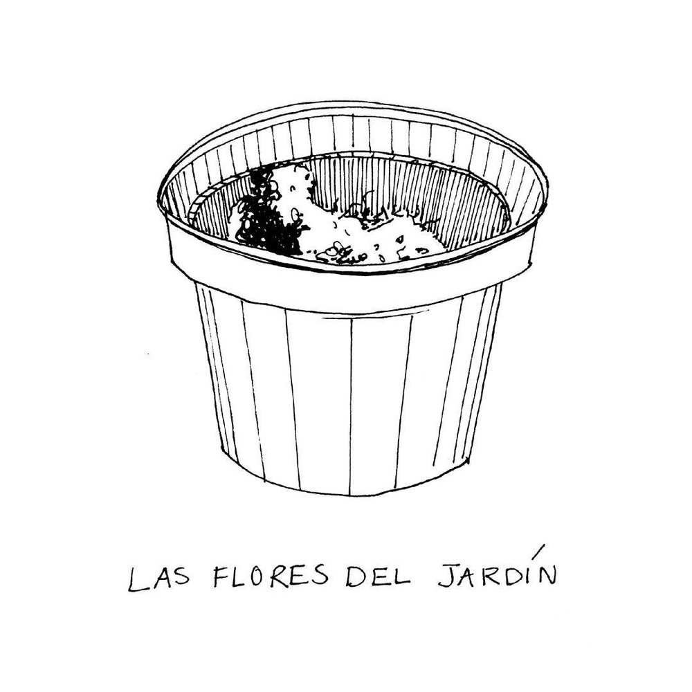 Las flores del jardín