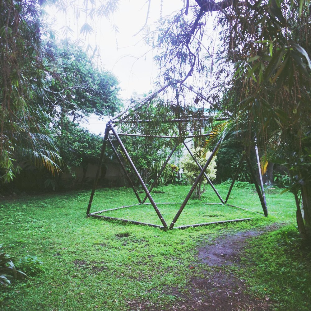 jardín, zacate, Icosahedra