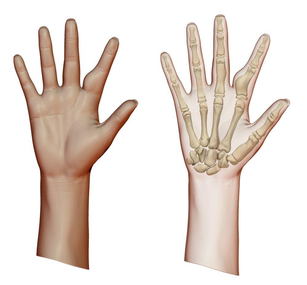 Hand and Xray.JPG