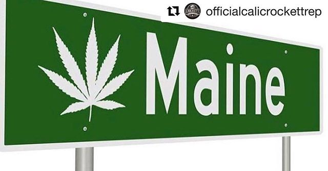 Out with @officialcalicrockettrep running the east coast up to #Maine for the #NeCANN on Saturday and Sunday! We got shirts and we have genetics. Hit us up with a DM if you're in NY, MA, or ME! #Repost @officialcalicrockettrep ・・・ Hey, fam!!! We will be in Maine next weekend at @necannacon with @geneticthreads, @dnageneticscalifornia , @cannaradoincali and plenty more rad industries folk! This event is the 4th annual Maine Cannabis Convention and will be featuring over 175 exhibitors, the largest industry event in Maine! . Please come find our booth and say hello, we'd love to connect! DM @officialcalicrockettrep us to let us know you'll be there! . Convention details: October 6th-7th, 2018 Portland Sports Complex 512 Warren Ave, Portland, ME 04103 Saturday 11am-6pm | Sunday  11am-5pm