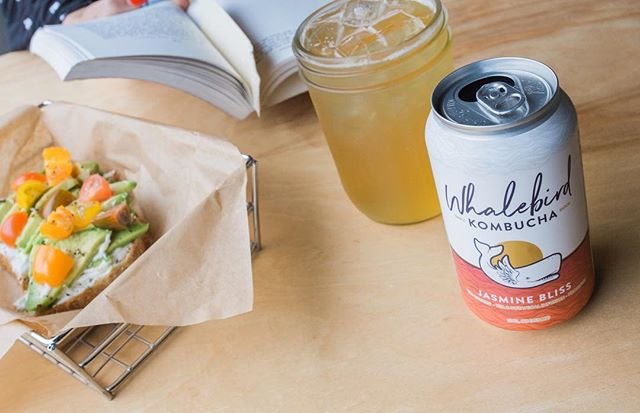 Come on down and enjoy our AC with us! Grab a Kombucha, Cold Brew or hot drink if that's your thing! We'll be chilling at a comfy 74. 😎 coffee #slo #whalebirdkombucha #avocado #toast #ilovelucys 📷 cred: @shannonmcmillenphotography
